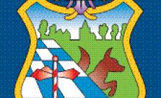 Scouting Sint Lidwina